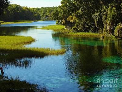 Beautiful River Art Print by D Hackett