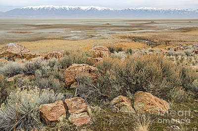 Photograph - Beautiful Rocks At The Great Salt Lake by Sue Smith