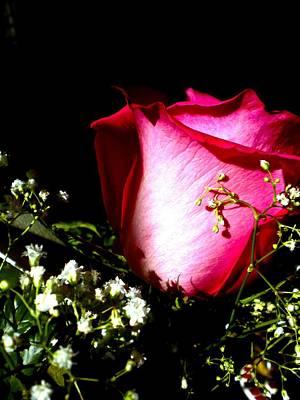 Beautiful Rose Art Print by Elizabeth Fredette