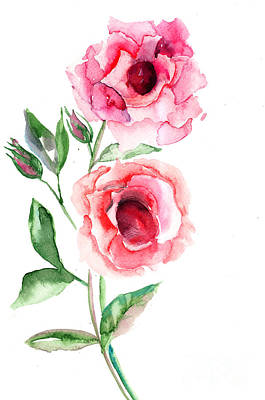 Beautiful Roses Flowers Art Print