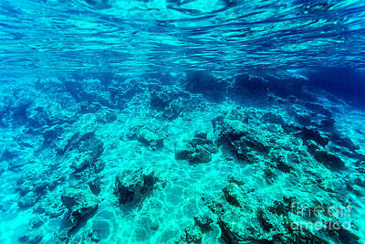 Photograph - Beautiful Seabed Background by Anna Om