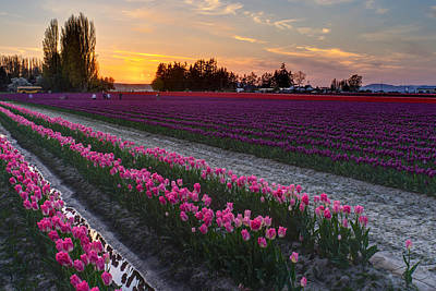 Photograph - Beautiful Skagit Evening by Mike Reid