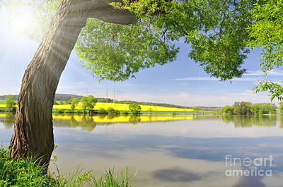 Beautiful Spring Landscape Art Print by Boon Mee