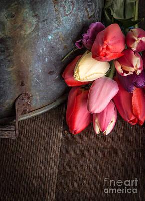 Beautiful Spring Tulips Art Print by Edward Fielding