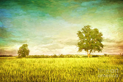 Photograph - Summer Fields Of Wheat/ Digital Painting by Sandra Cunningham