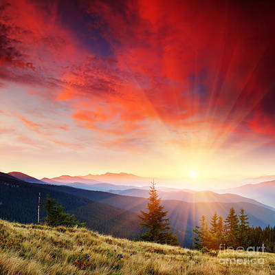 Hofner Photograph - Beautiful Summer Landscape In Mountains by Boon Mee