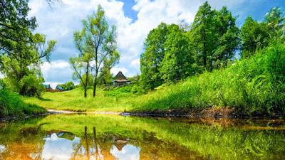 Beautiful Summer Landscape Art Print