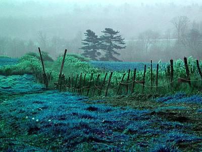 Beautiful Blue Grass Hill - Colorized Photograph Original by James Scott Preston