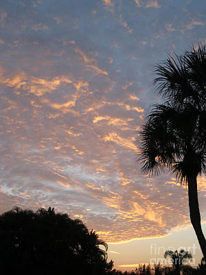 Sarasota Artist Photograph - Beautiful Sunrise 57 by Oksana Semenchenko