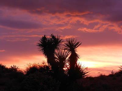 Beautiful Sunset In Arizona Art Print