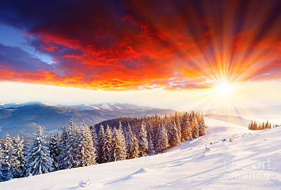 Beautiful Sunset In The Winter Art Print by Boon Mee