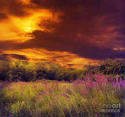 Spring Scenery Pyrography - Beautiful Sunset by Jelena Jovanovic