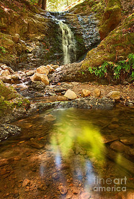 Beautiful View Of Upper Falls Located In Uvas Canyon County Park Forest Reflection Art Print