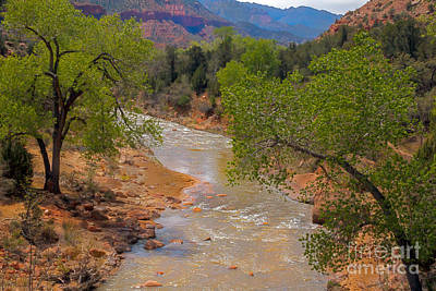 Photograph - Beautiful Virgin River by Robert Bales