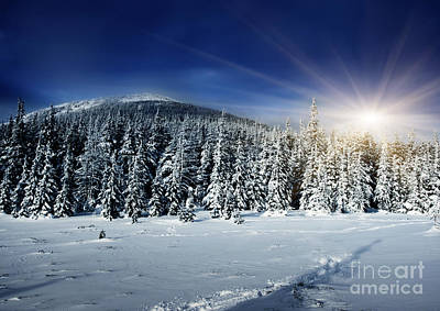 Beautiful Winter Landscape With Snow Covered Trees Print by Boon Mee