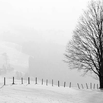 Beautiful Winter Landscape With Tree And Fence Art Print