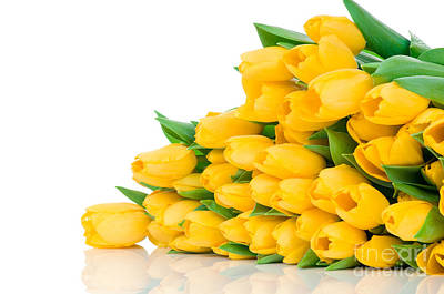 Beautiful Yellow Tulips Valentine Print by Boon Mee