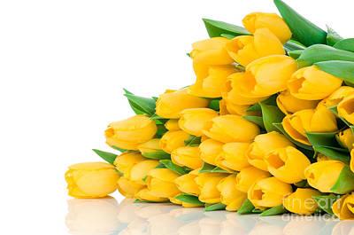 Beautiful Yellow Tulips Valentine Art Print