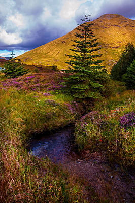 Photograph - Beauty All Around. Rest And Be Thankful. Scotland by Jenny Rainbow