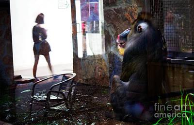 Absurdity Photograph - Beauty And The Beast by Elena Lir-Rachkovskaya