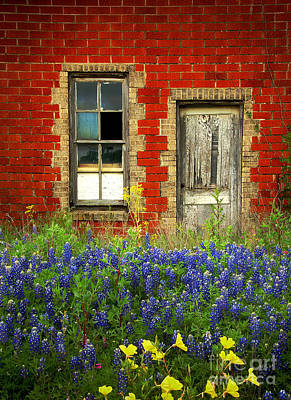 Red Door Photograph - Beauty And The Door - Texas Bluebonnets Wildflowers Landscape Door Flowers by Jon Holiday
