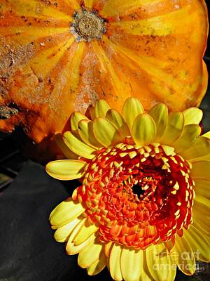 Photograph - Beauty And The Squash 2 by Sarah Loft
