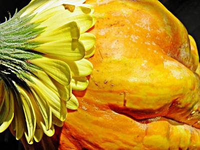 Photograph - Beauty And The Squash 3 by Sarah Loft