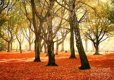 Art Print featuring the photograph Beauty Autumn by Boon Mee