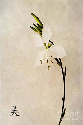 Stamen Digital Art - Beauty by John Edwards