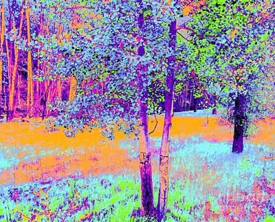 Beauty Of An Aspen Grove Art Print by Ann Johndro-Collins