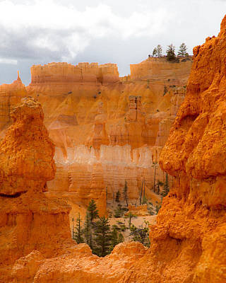 Photograph - Beauty Of Bryce by Jim Snyder