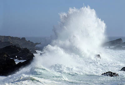 Photograph - Beauty Of California Salt Point Wave Action by Bob Christopher