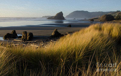 Photograph - Beauty Of Oregon Sebastian Beach 3 by Bob Christopher