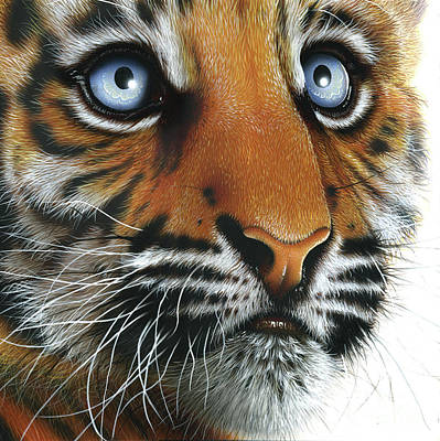 Wild Cat Painting - Beauty Of My Mother's Eyes by Jurek Zamoyski