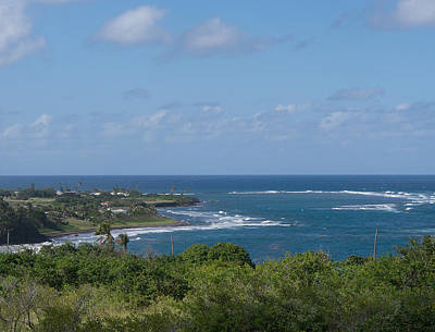 Photograph - Beauty Of St. Kitts 3 by Karen Zuk Rosenblatt