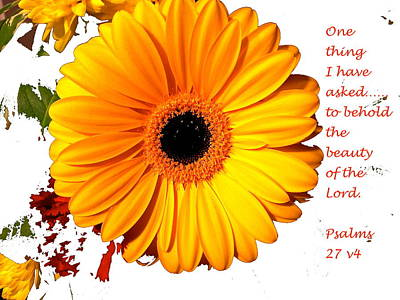 Beauty Of The Lord Original