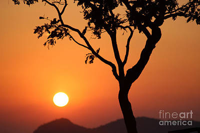Beauty Of The Nature Art Print