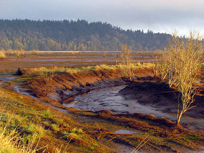 Art Print featuring the photograph Beauty Revealed At Low Tide by I'ina Van Lawick
