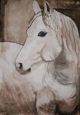 Horse Lovers Drawing - Beauty by Steven Clayton