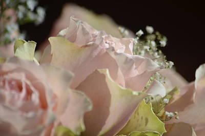 Photograph - Beauty Up Close by Deprise Brescia