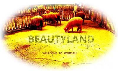 Beautyland Art Print