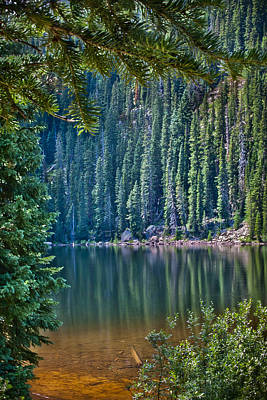 Photograph - Beaver Lake  by James Woody