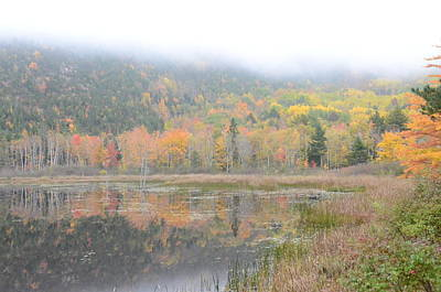 Photograph - Beaver Lake Maine by Michael Gooch