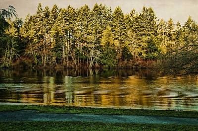 Photograph - Beaver Lake by Marilyn Wilson
