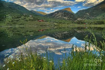 Photograph - Beaver Lake Wildflowers by Adam Jewell