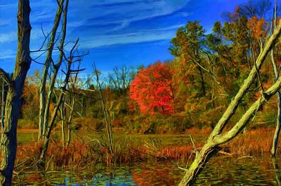 Digital Art - Beaver Marsh In October by Dennis Lundell