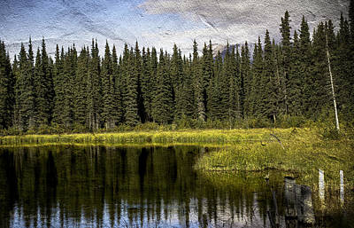 Photograph - Beaver Pond Fall 2014 by Fred Denner