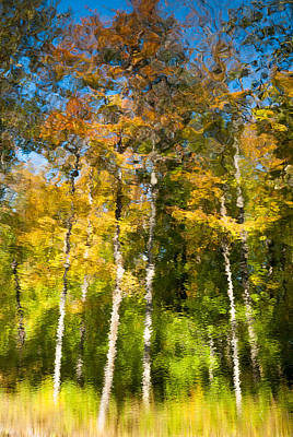 Photograph - Beaver Pond Reflections 4 by Rob Huntley