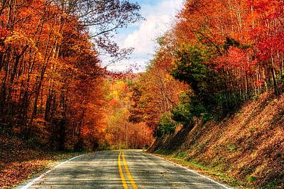 Photograph - Beaverdam Road In Fall by Greg Mimbs