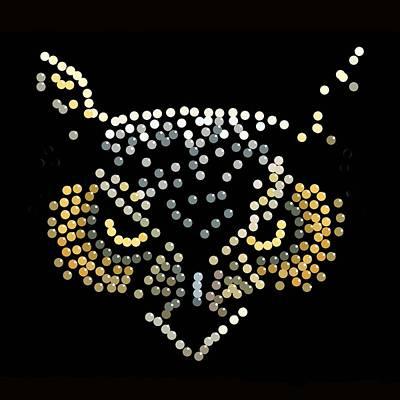 Digital Art - Bedazzled Owl by R  Allen Swezey